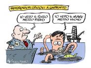 La Vignetta di CeciGian ci spiega il Referendum