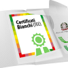 Certificati Bianchi o Titoli di Efficienza Energetica (TEE)